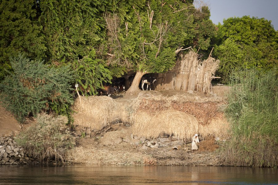 2015 LONG CRUISE NILE VIEW Ancient World Tours