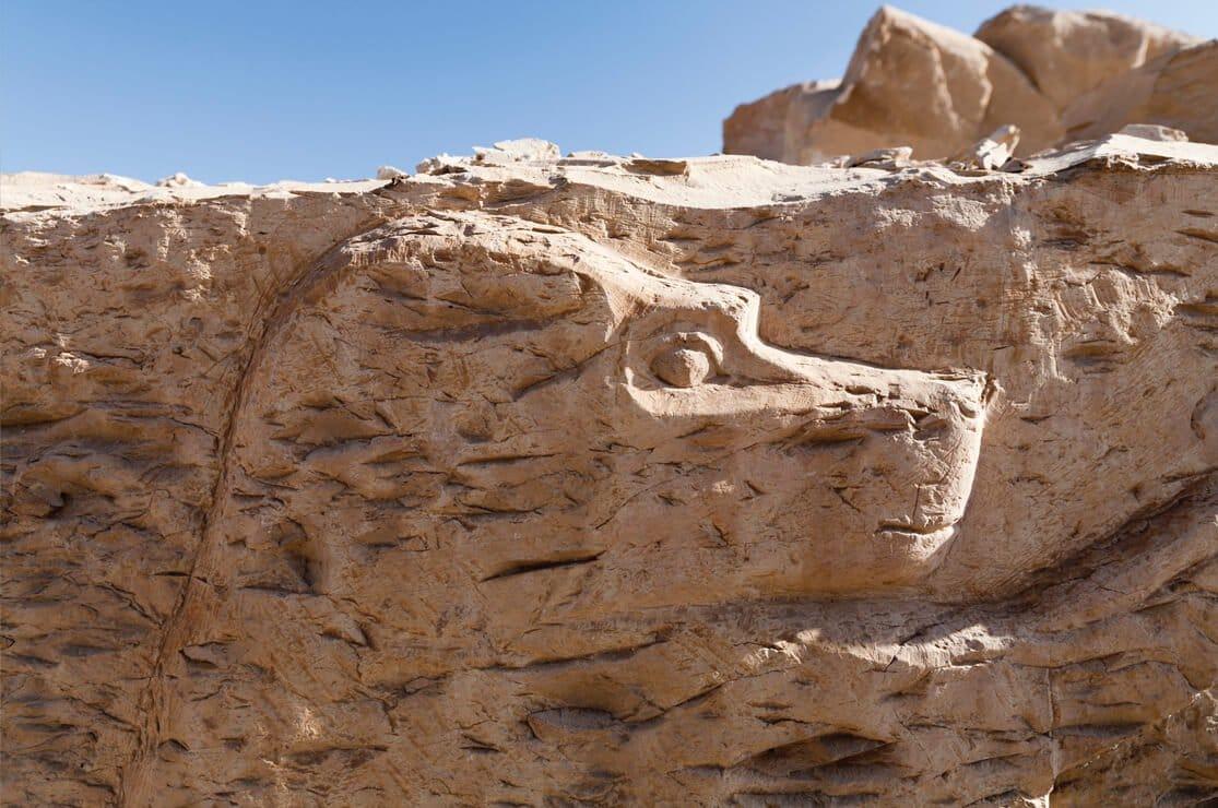 Kom el Sultan, Temple of Monkeys