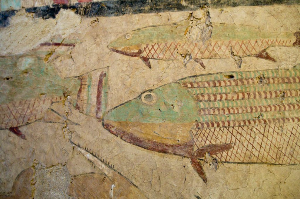 Tomb of Ankhtify, Mo'alla ,Egypt, Ancient World Tours