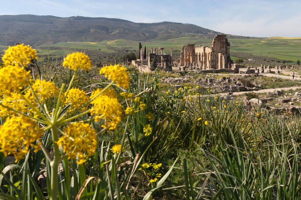 Volubilis, Morocco, Ancient World Tours
