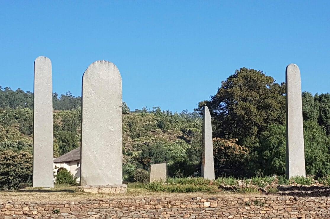 Axum Stelae Field