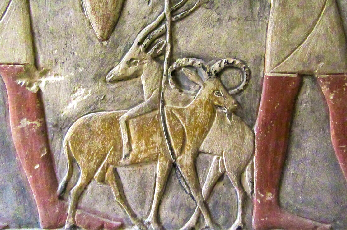 Mastaba of Mehu
